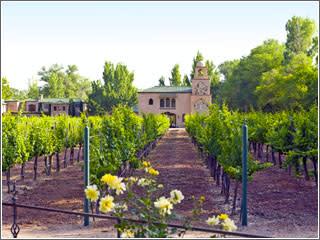 ACVB photo JS winery