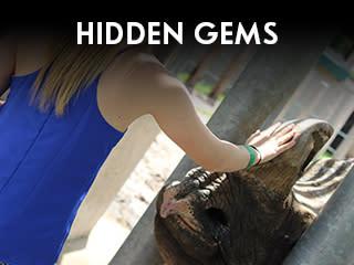 Wichita Promise Hidden Gems