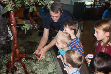 Touch Tank at the Delaware Children