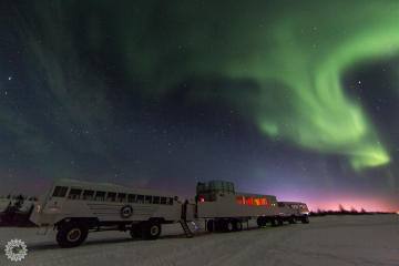 Northern Lights and Winter Nights