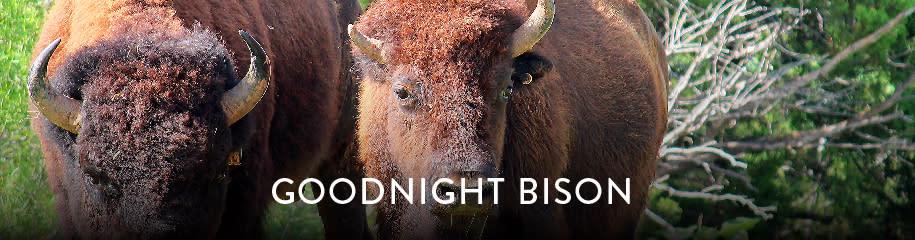 Weekend Getaway Goodnight Bison