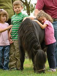 Horse Park Children