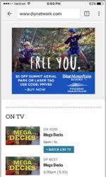 2017 Summer Marketing Campaign - Online - Diynetwork.com - Blue Mountain Resort