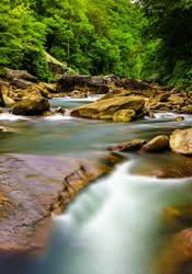 North Chickamauga Creek