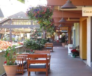 Carmel Plaza Shops