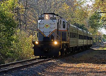 Scenic Train Ride through New York forrest