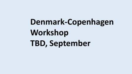 Denmark workshop 2020