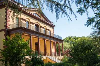 Hampton-Preston Mansion & Gardens