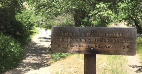 trailhead battle creek falls, curley springs
