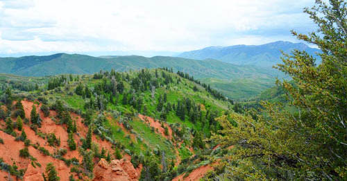 The Ultimate Guide to 50 Best Hikes in Utah Valley - Mount Nebo Bench Trail