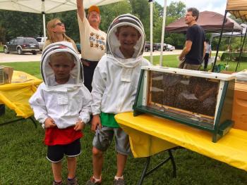 honeybee festival, honey, honeybees, beekeeper