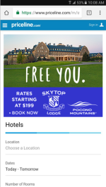 2017 Summer Marketing Campaign -  Online - Priceline.com - Skytop Lodge