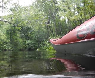 Go Kayaking Tours