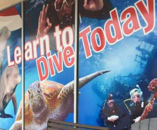Learn to Dive today!