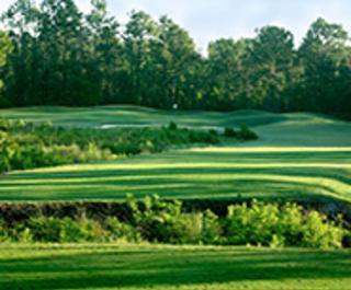 Cypress Head Golf