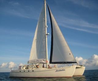 Fun Cat Sailing