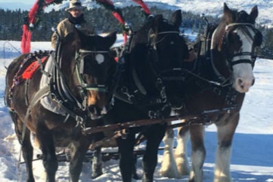The Ranch Sleigh Rides