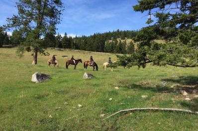 Campbell Creek Trail ride