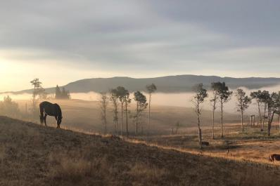 Early morning at Campbell Hills