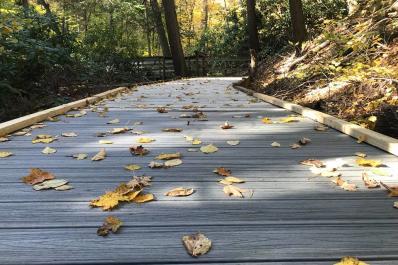 Delaware Water Gap Trail