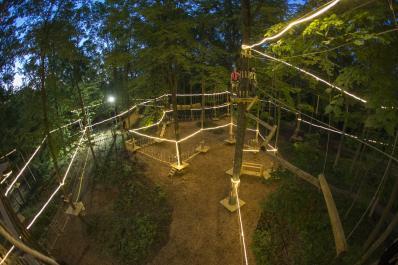 TreEscape Night Course