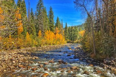 Fall Drives North Routt