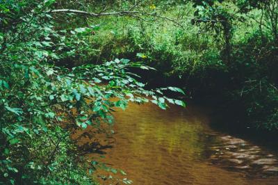 Sherman Creek Park