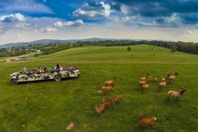 lake-tobias-wildlife-park-safari-museum-halifax