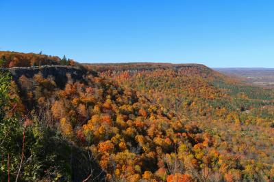 Thacher Park in Fall