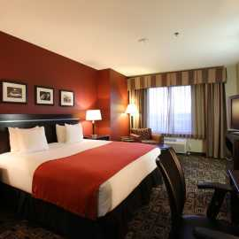King Executive Room