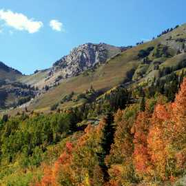 Alta in the Fall