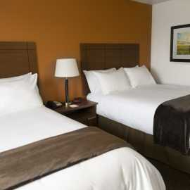 Double Beds 2