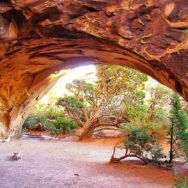 Moab Arches 2