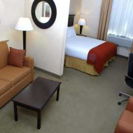 Single King room with pull out sofa