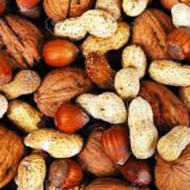Western Nut Company