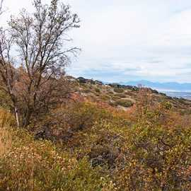 Looking down into the Salt Lake Valley from the Corner Canyon trail system, photo by Kyle Jenkins