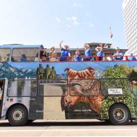 Double Decker Bus One Side