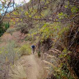 There are several rock walls on the trail, photo by Brant Hansen