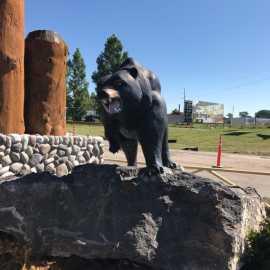 Yellowstone Bear World_0
