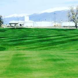 Rose Park Golf Course_2