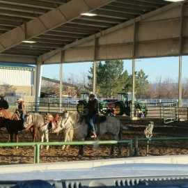 Salt Lake County Equestrian Park_0