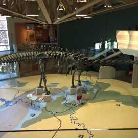 Utah Field House of Natural History State Park Museum_1