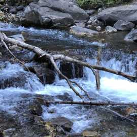 Wasatch Mountain State Park_2