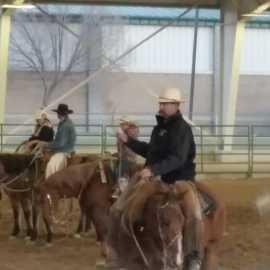 Salt Lake County Equestrian Park_1