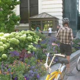Salt Lake Bicycle Tours_1