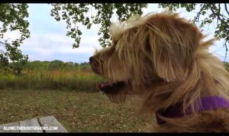 Bark Side of the Dune Ep. 2 - Gabis Arboretum