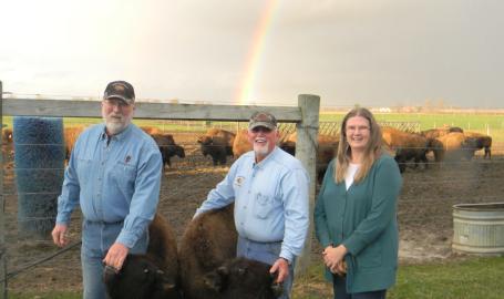 Broken Wagon Bison Hobart Things to Do rainbow