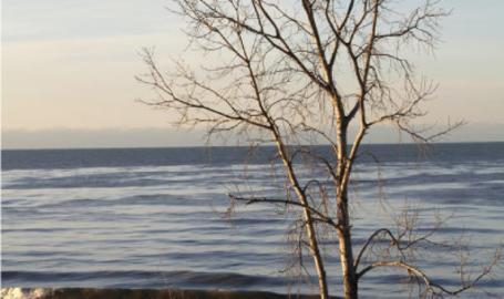 Indiana Dunes National Lakeshore Beach Winter
