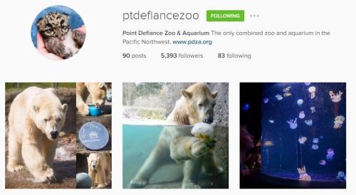 Point Defiance Instagram