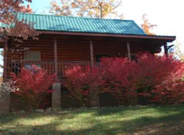 Cottage with red bushes